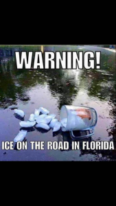 Funny Florida Photo